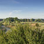 Das Donaumoos
